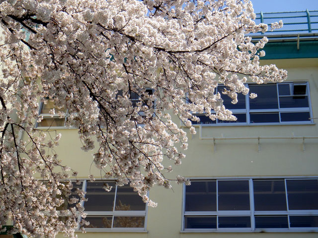 学校の校舎写真